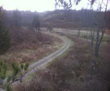 View from Hunting Stand2