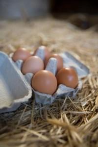 eggs_straw-200x300